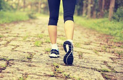đi bộ nhiều chân có to không